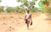 Insécurité : Le cri du cœur des paysans de la Casamance